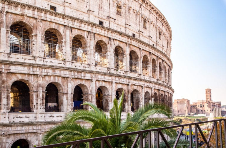 Colosseum Rome with palm tree